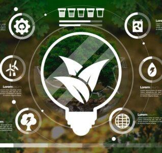 Quanto è sostenibile il servizio di raccolta degli oli vegetali esausti di Adriatica Oli?